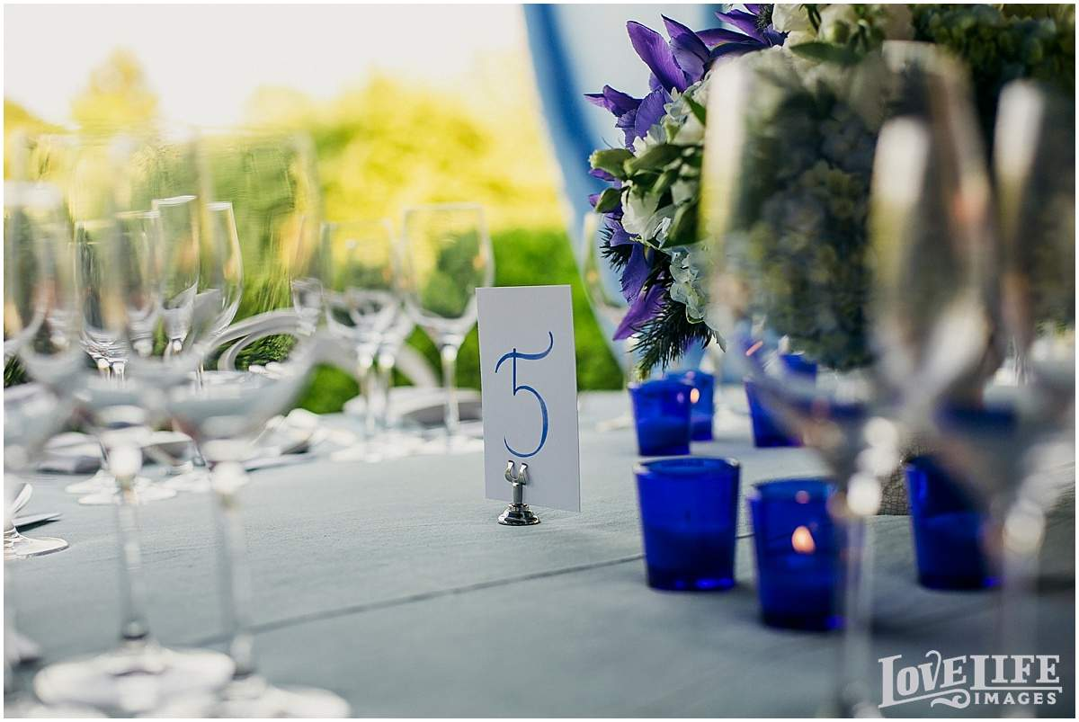 Chesapeake Bay Beach Club Wedding_0006