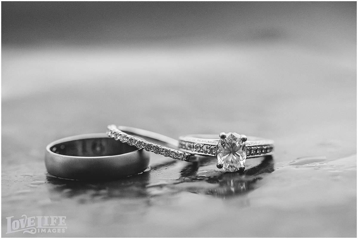 Chesapeake Bay Foundation Wedding_0039