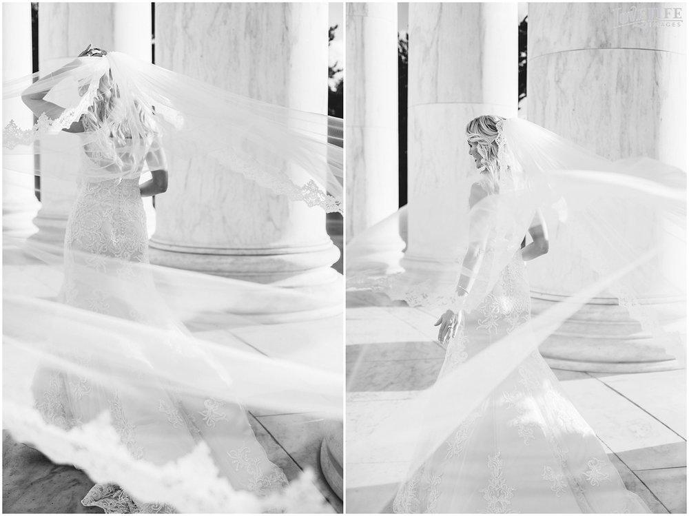 Mayflower Hotel DC Wedding flowing bridal veil portrait.jpg