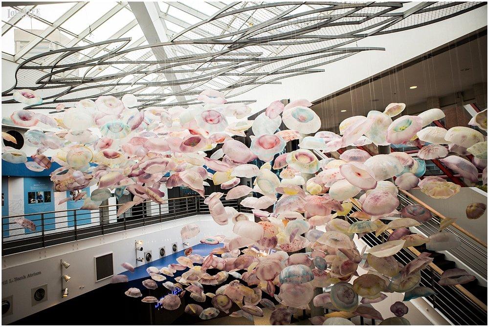 National Aquarium Baltimore Wedding jellyfish sculpture.JPG