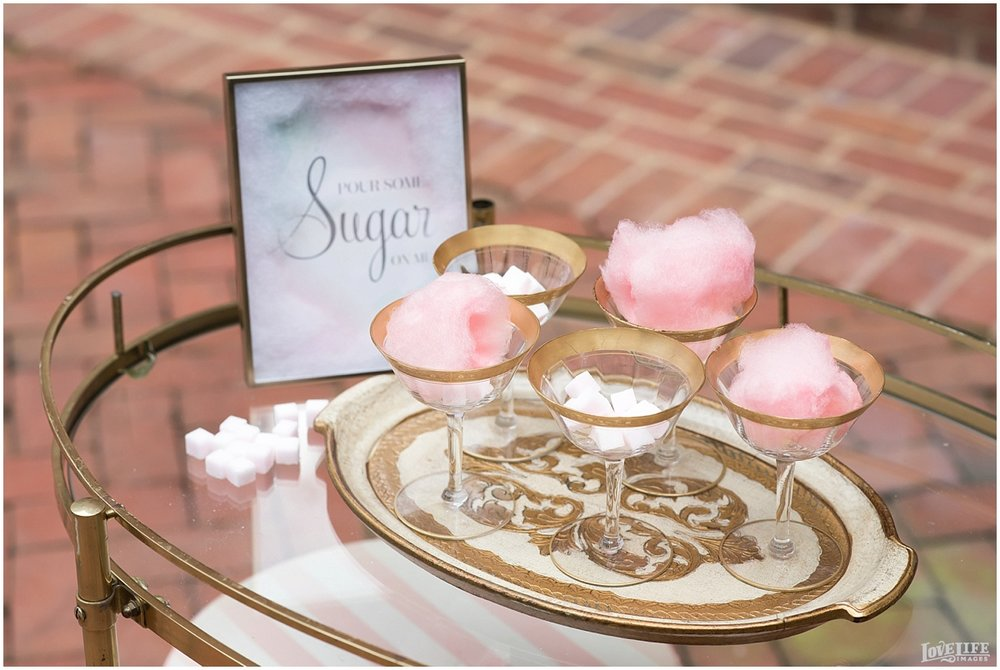 Cotton Candy Styled Wedding Shoot_0011.jpg