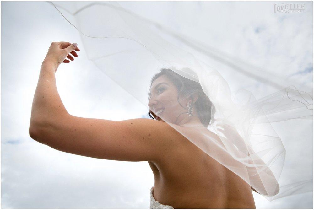 District Winery Fall DC wedding billowing veil bridal portrait.JPG