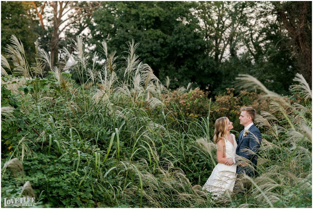 River Farm Wedding portrait in wheatgrass field.jpg