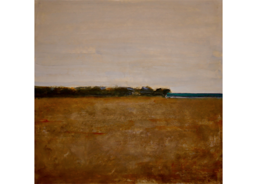 7- Untitled (field).png