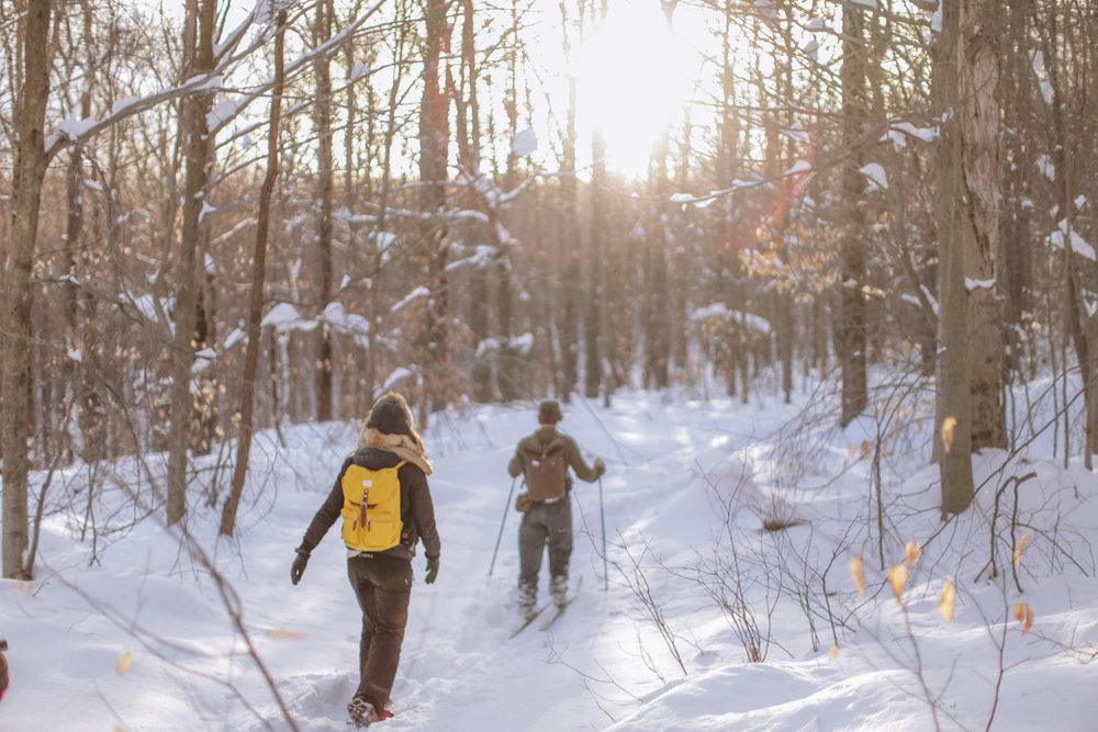 snowshoeing-45.jpg