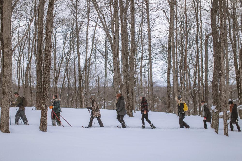 snowshoeing-39.jpg