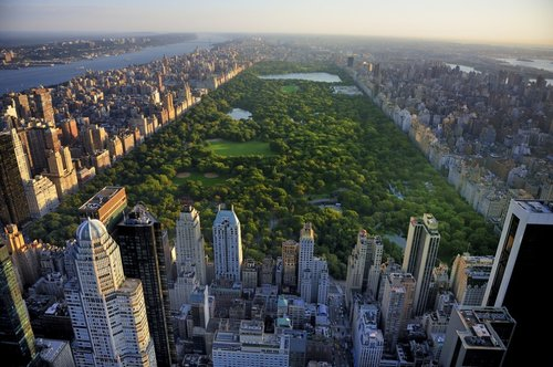 - Central Park Conservancy