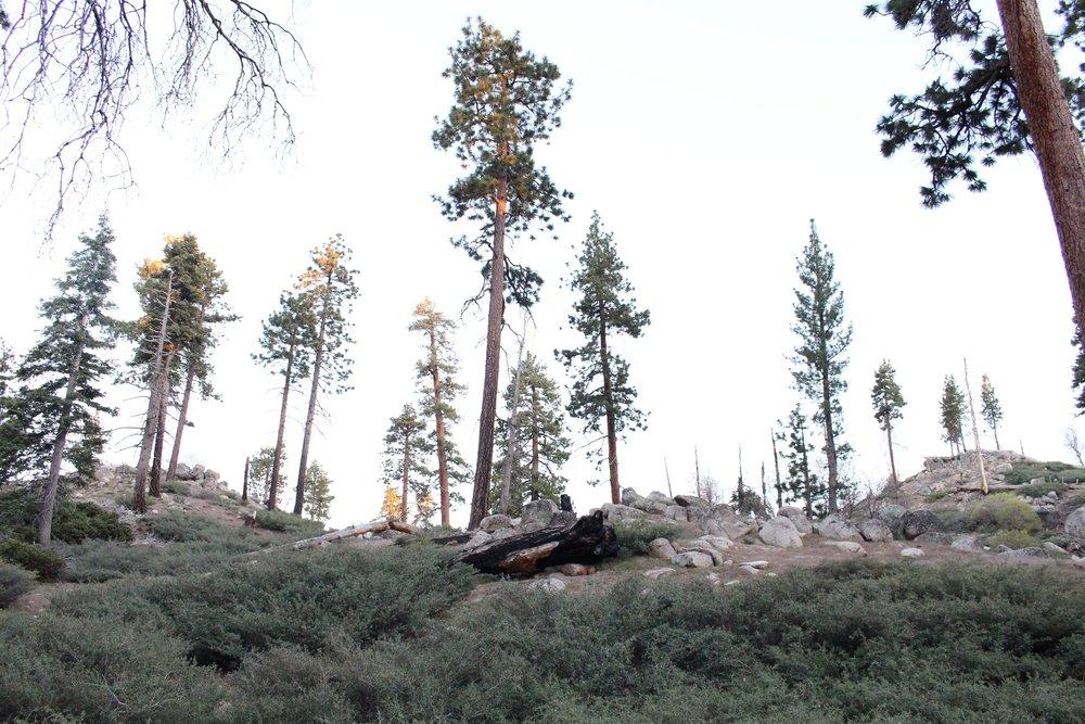 Hanna_Flat_Campground