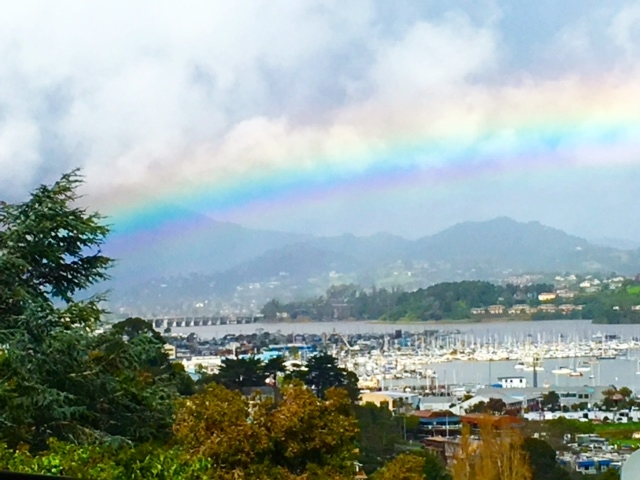 Amazing photo taken by Grace's Aunt Annie, right from her back patio! Sausalito is magic.