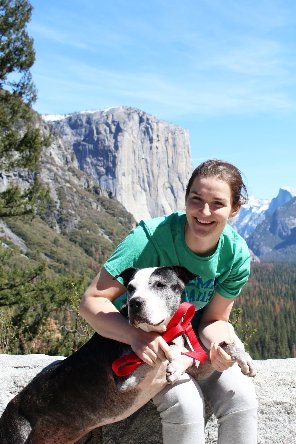 what is the only dog-friendly trail in yosemite