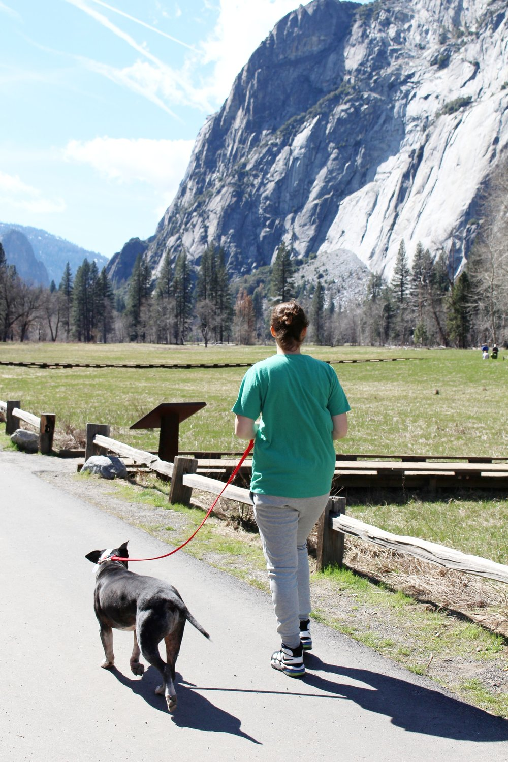 Look at these responsible Yosemite visitors, staying on the paved pathways.