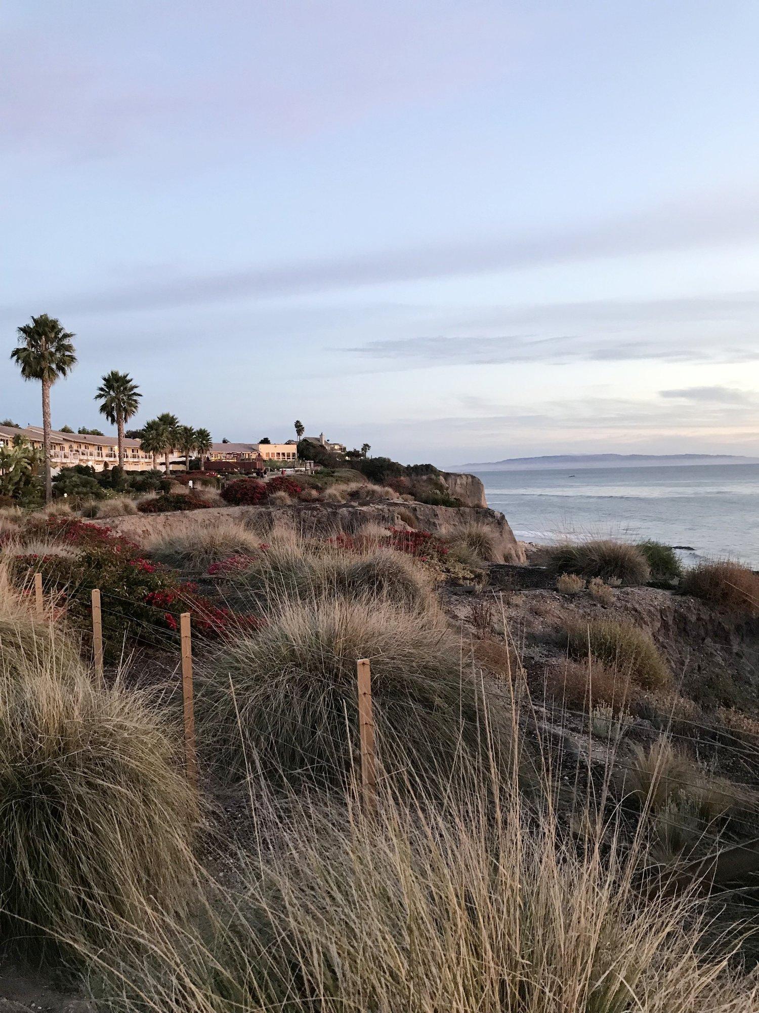 Surprise Dog-Friendly Birthday Trip to Pismo Beach — Have