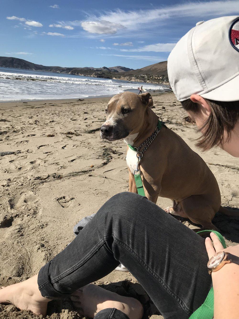 Sandy_Pismo_Dog