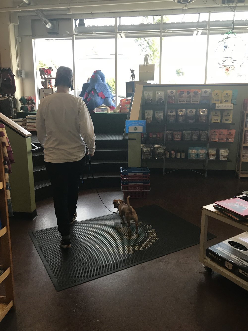 We love Tailwaggers! I love that it's a local business and it's also where we first met Bean, at an adoption event they were holding.