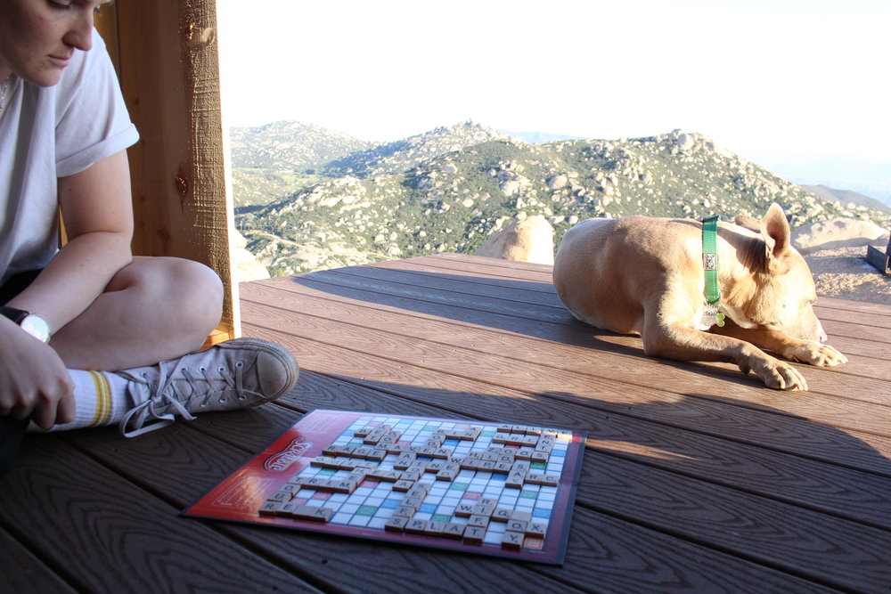 Scrabble_Camping