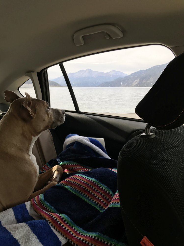 Muncho_Lake_Car_Ride.jpg