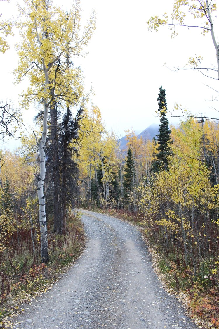 Kluane_Colors.jpg