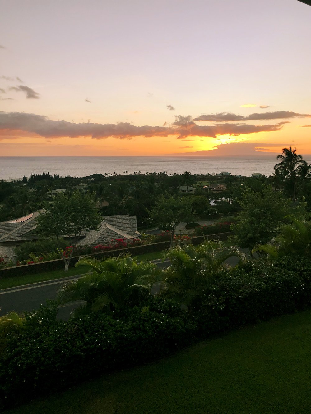 The view from our balcony (called a Lanai in Hawaii)