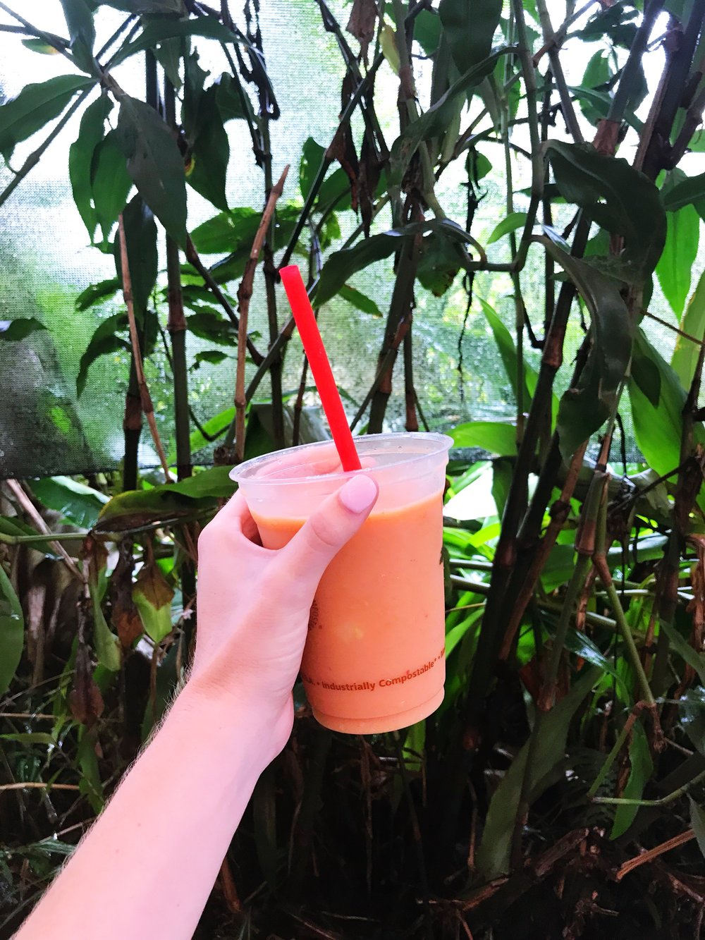 Road_to_Hana_Smoothie