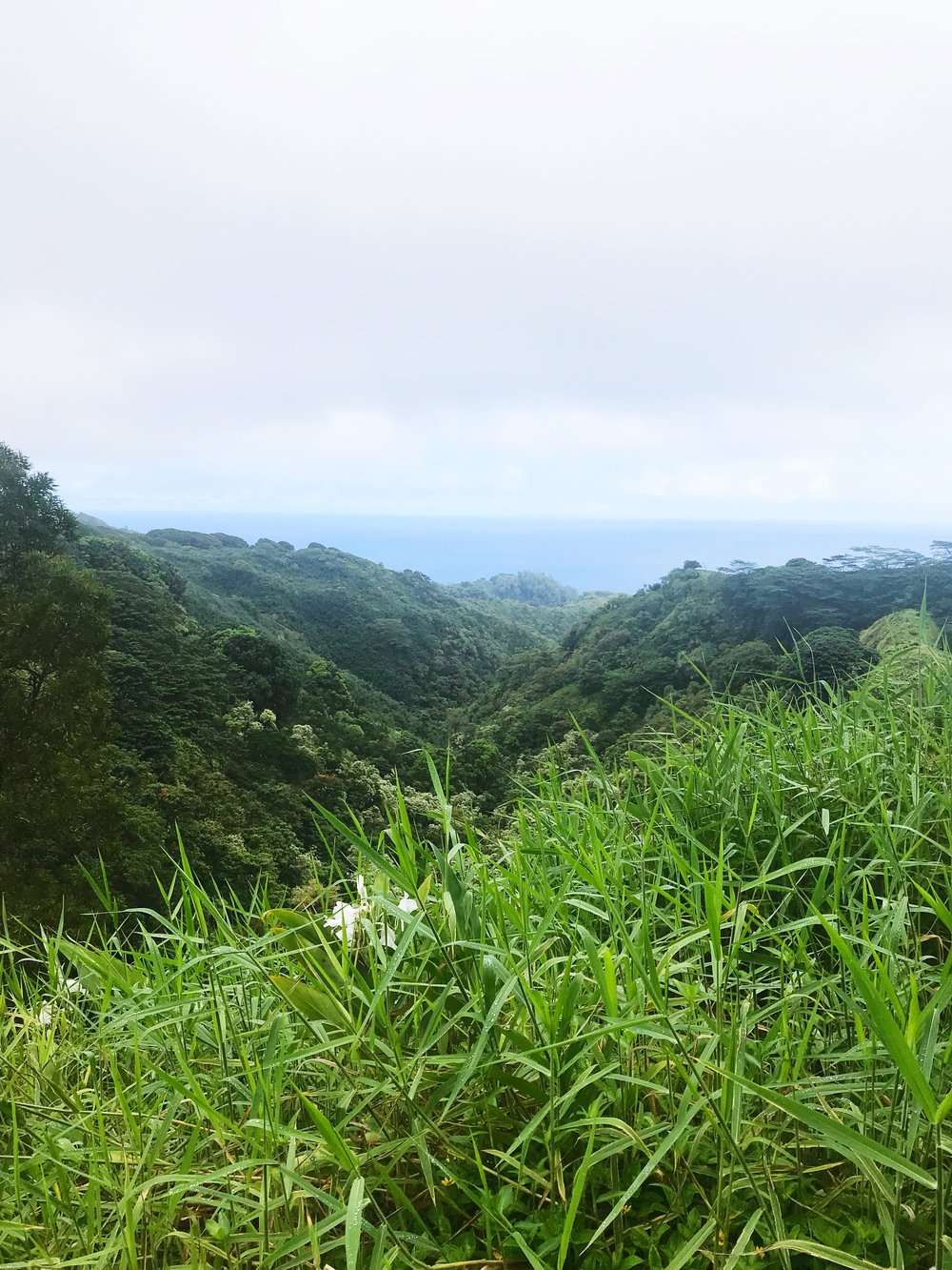 Road_to_Hana_Views