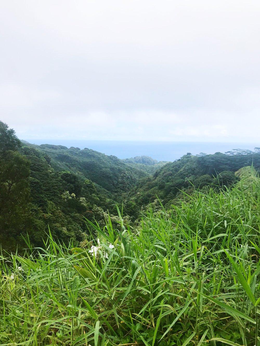Road_to_Hana_Views