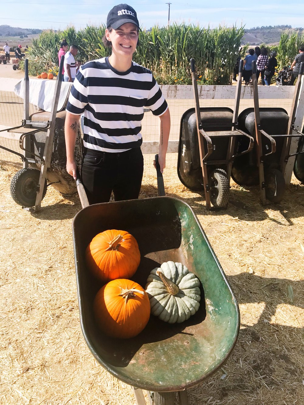 Wheelbarrow_Pumpkins