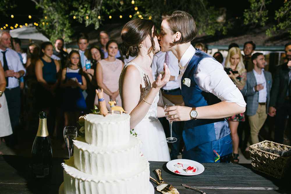 Wedding_Cake_Feeding