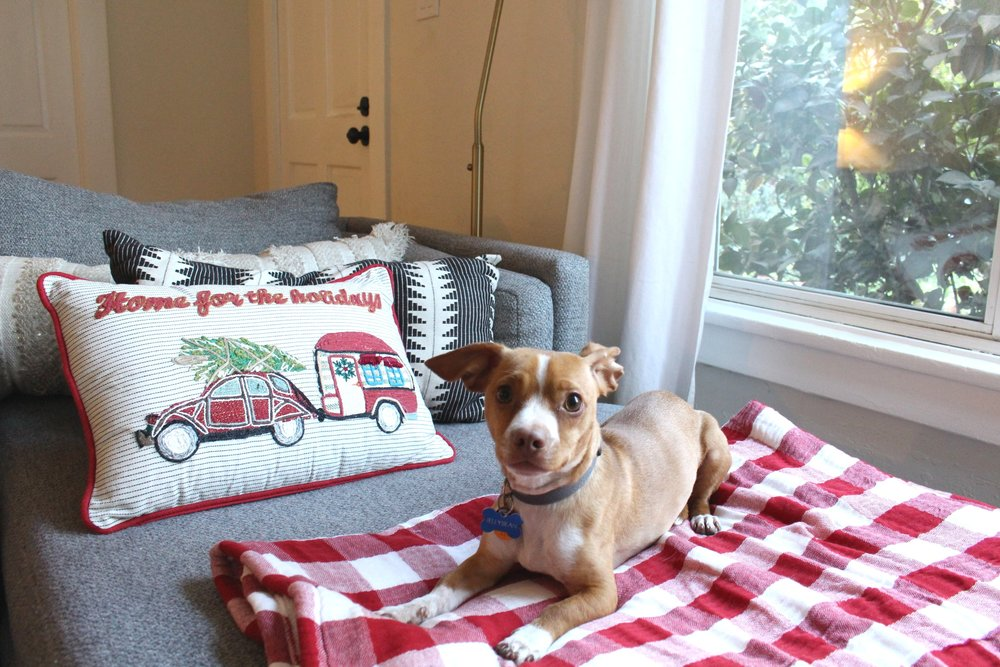 "I also changed out our usual throw blanket for a red plaid Christmasy blanket (which the dogs oddly LOVE laying on much more than the old one), and added a ""Home for the Holidays"" throw pillow to our couch!"