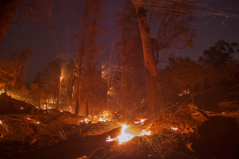 A strong wind blows embers from smoldering trees at the Thomas Fire on December 16, 2017 in Montecito, California. The fire has now been officially declared out.