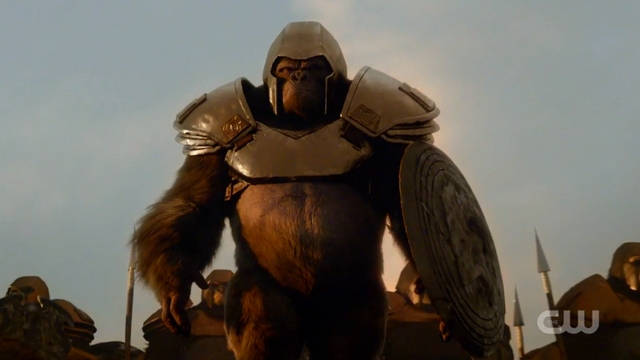 Gorilla-Grodd-Facts-The-Flash-DC-Comics.jpg