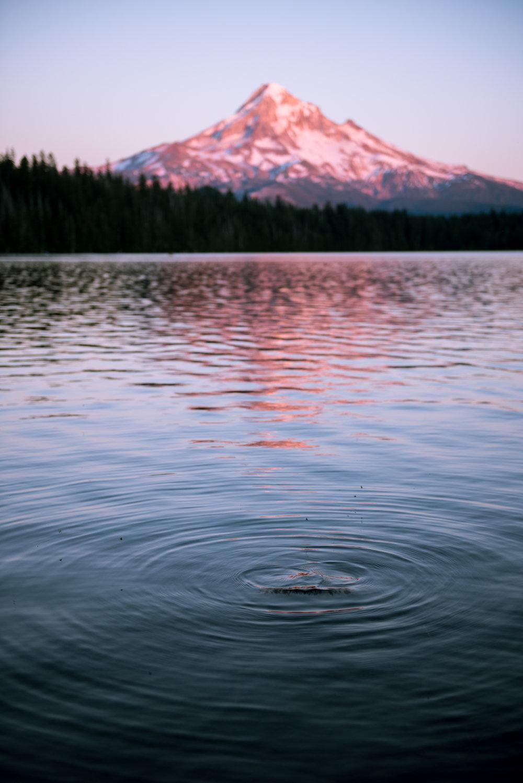 07-22-17 Mt. Hood_0320.jpg
