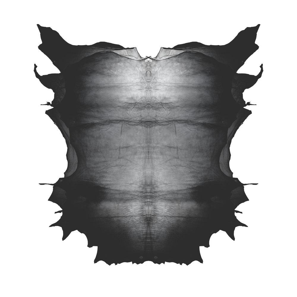 APPARITION - Skin Soft Black.jpg