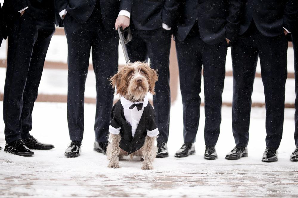 Best Park City Wedding Venue_Winter_Weddings_Stein_Eriksen_Lodge-1100.jpg
