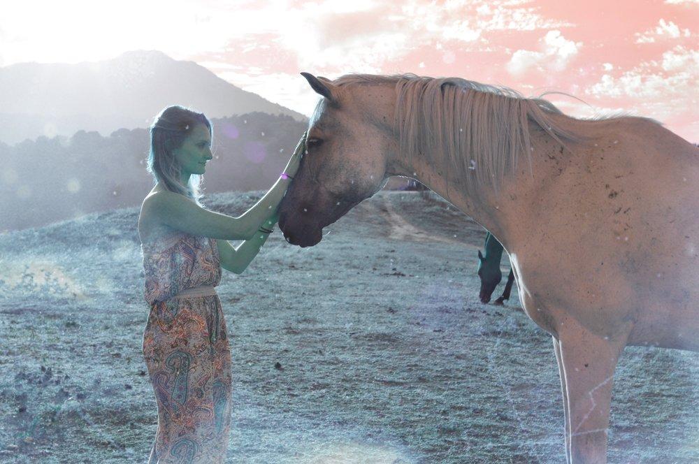 HorseMagic.JPG