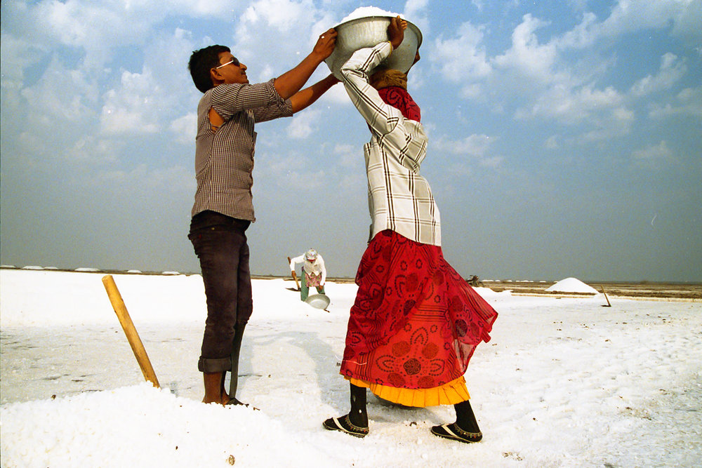 Salt of the Earth, 35mm Film, Gujarat, India, 2016