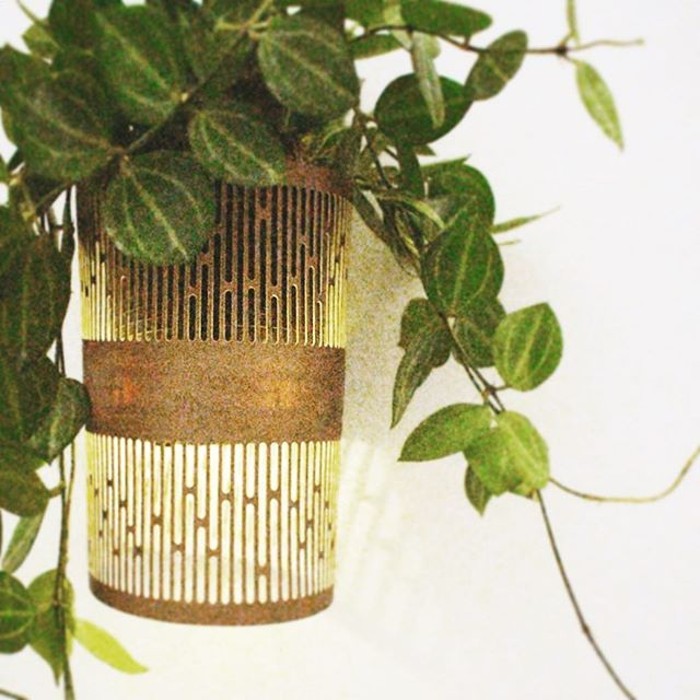 @tumbleweedplantssg came up with the idea of hanging out diah light as a wall sconces and placing some of their beautiful plants for that extra extra. I honestly can't wait to try this at home for this Christmas season! I'm thinking #airplants will work just as nicely. . . . #plantmomma #plantsofinstagram #light #design #designsg #giftideas #christmasgifts #freeshipping #wallsconce #lightingdesign #productdesign #minimal #minimalism #ecofriendly #planter #idiah