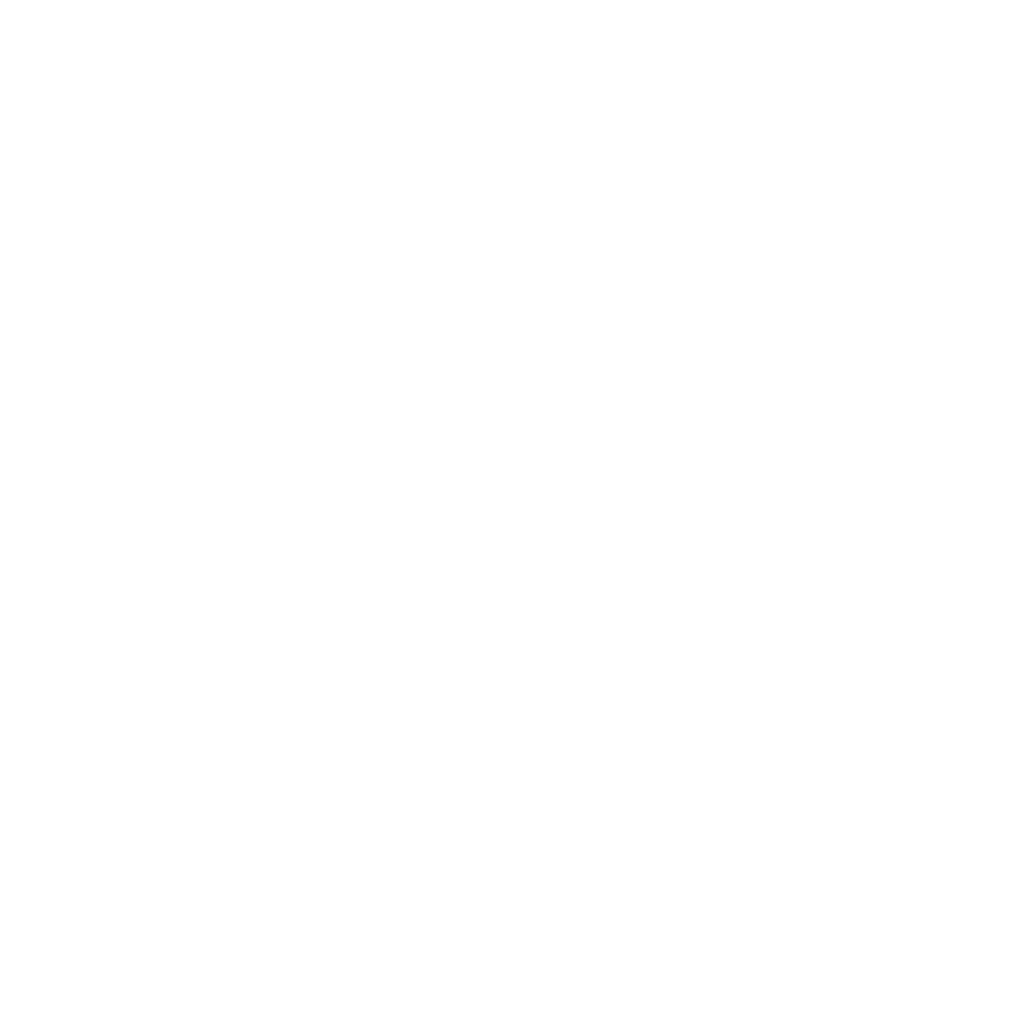 Bud Stannix LLP |  Accounting & Advisory Services