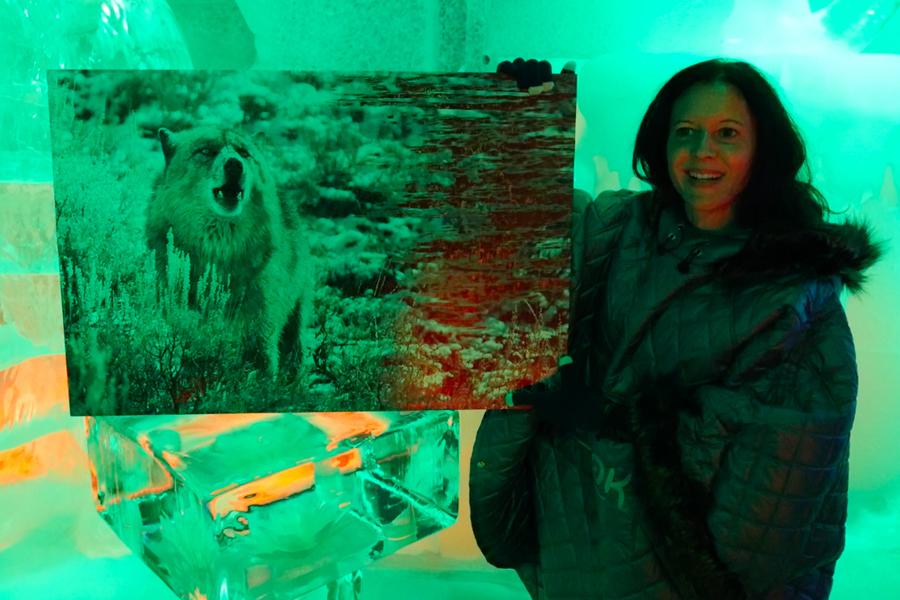 Exhibition in Berlin's Ice Bar; 2018.