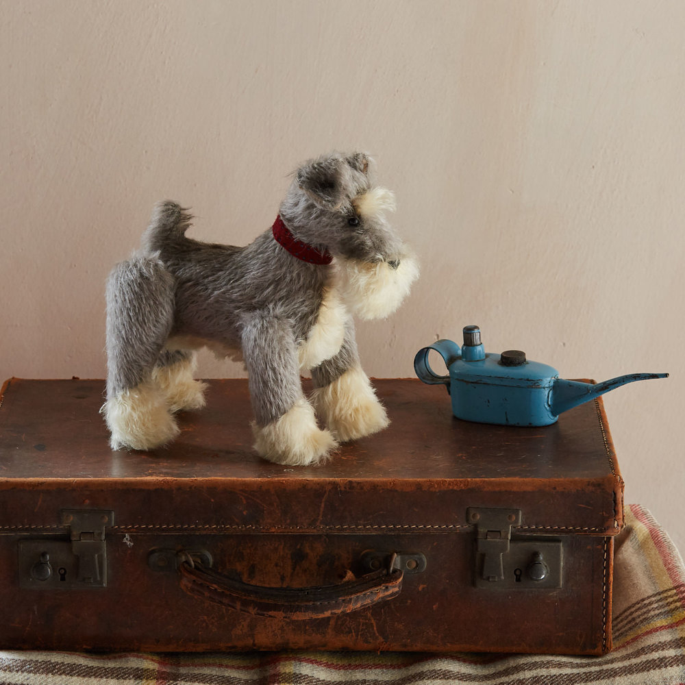 Little-Toy-Dog-Co-21.4.171751 1.jpg