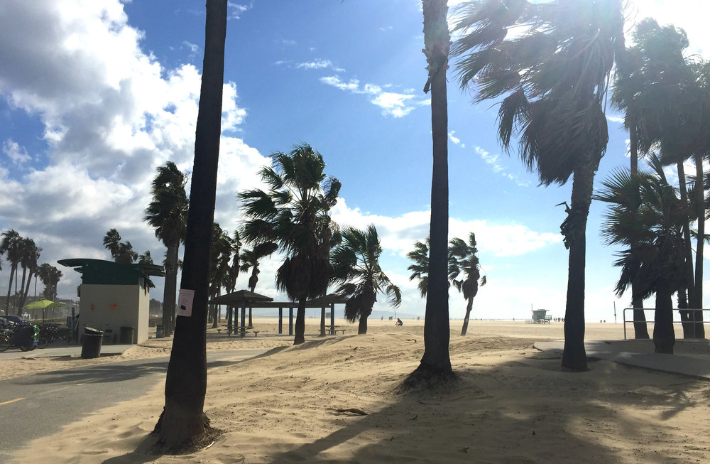 This was my very first day in Venice Beach - stormy, but unforgettable.