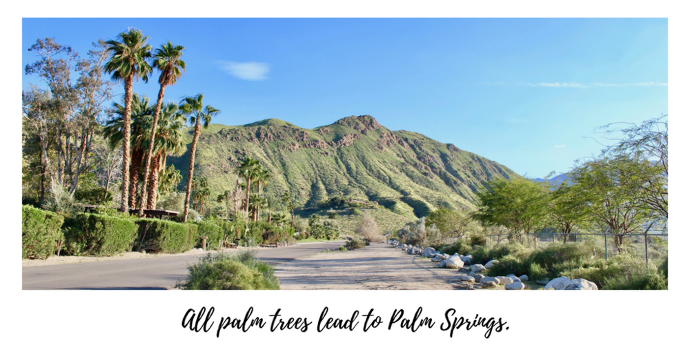 AWorldFullofFairytales_Palm_Springs_tw.png
