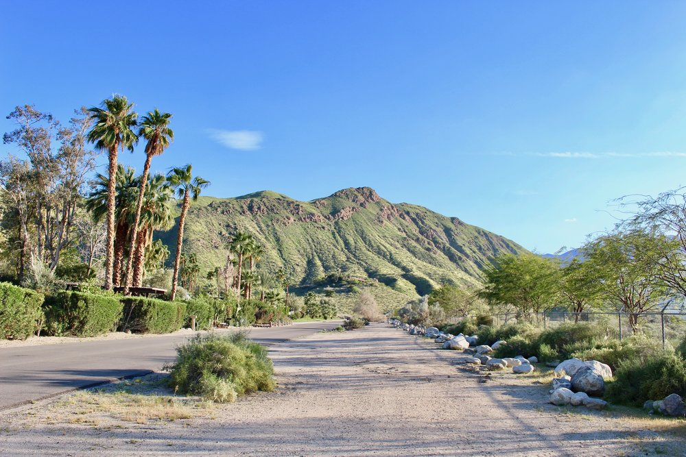 fullfairytales_Palm_Springs_09.jpg