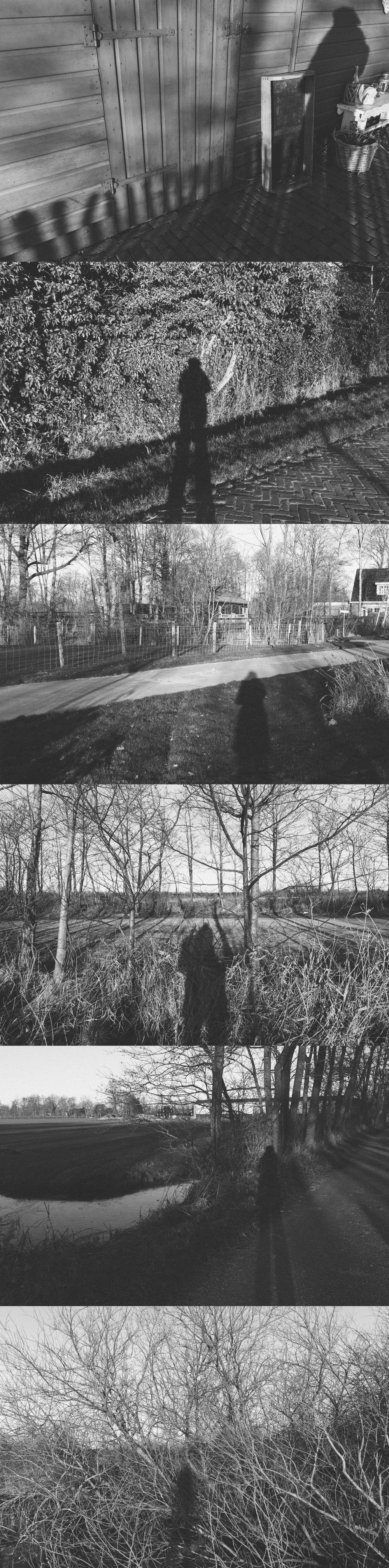 Vivian's shadow (sequence).jpg