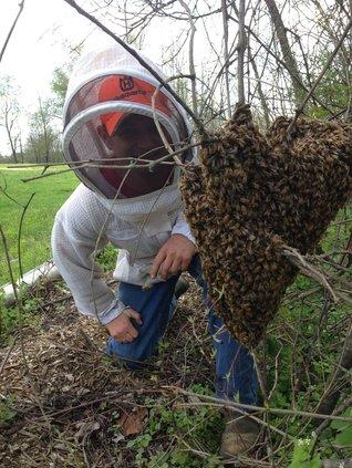 bee-barons-raw-honey-muskingum-county-ohio.jpg