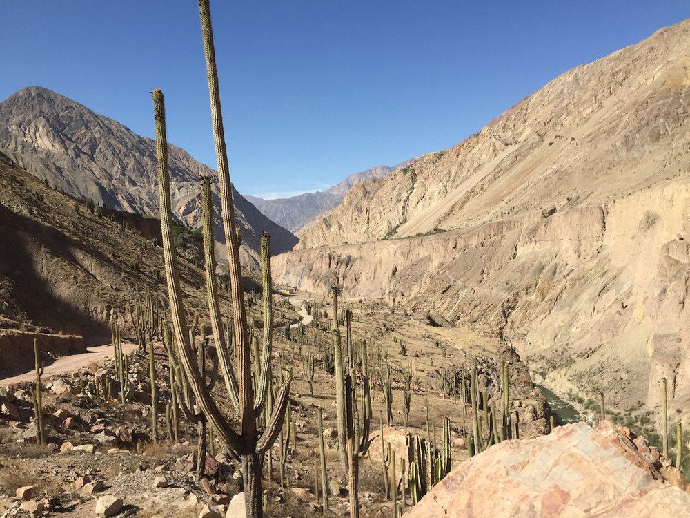Cotahuasi-Canyon-Peru.jpg