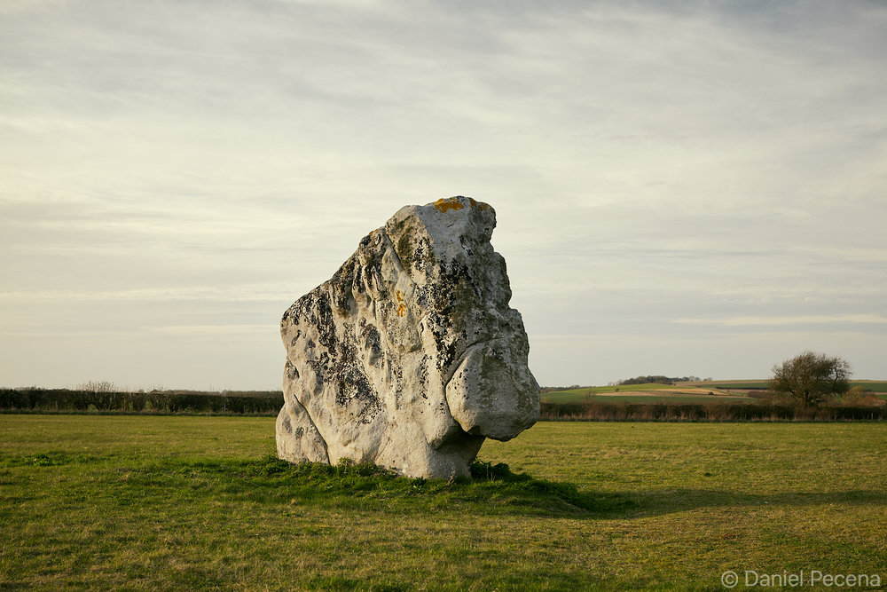 The Longstones, Beckhampton Avenue near Avebury, Wiltshire
