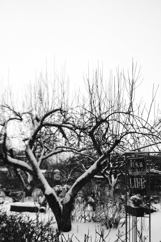 ritamaria-puutalo-013.jpg