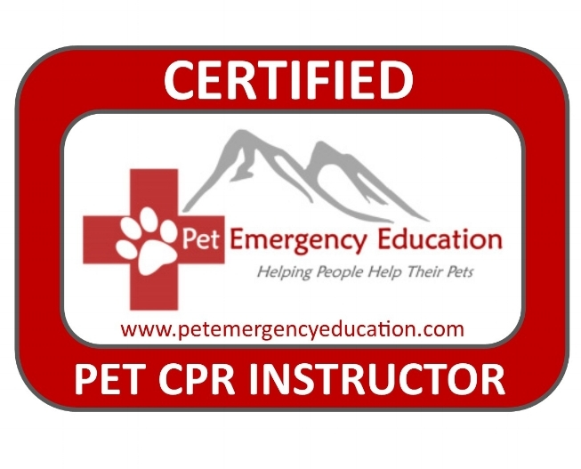 pet first aid & cpr training — kumfy tailz