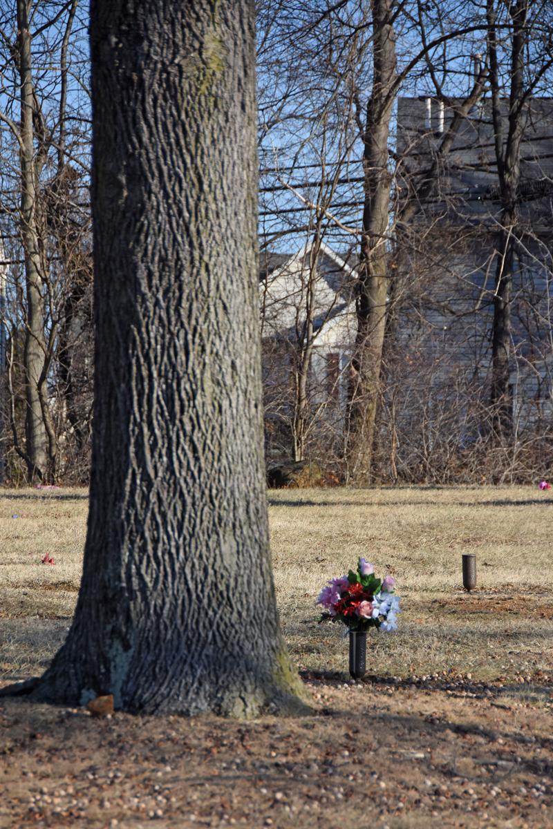 urn and tree.jpg