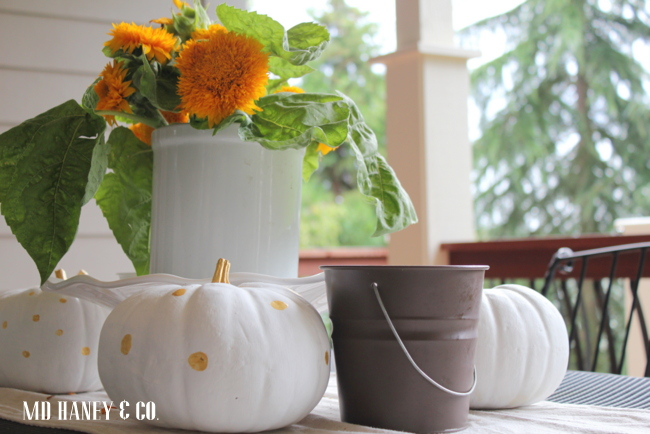 polkadot pumpkins